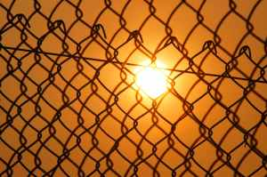 sun over the cyclone fence
